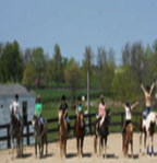 Paddle Stone Equestrian Center, LLC