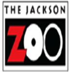 Jackson Zoo Camp