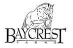 Baycrest Farms Riding Camp