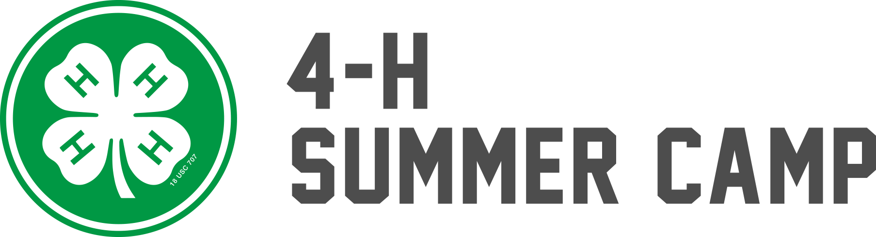 4-H Summer Camp