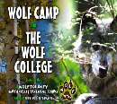 Wolf Camp and the Wolf College