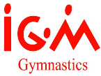 IGM Gymnastics Day Camp