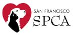 San Francisco SPCA Animal Camp