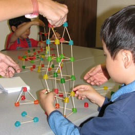 Junior Math/Science - Scottsdale