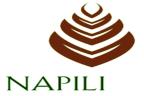 CITY  OF  NAPILI
