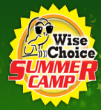 Wise Choice Summer Camp