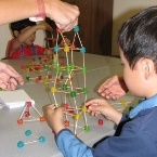 Junior Math/Science - Tempe