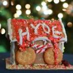 Hyde School Postgraduate Year