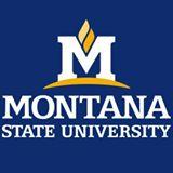 Montana State University  Montana State Universit